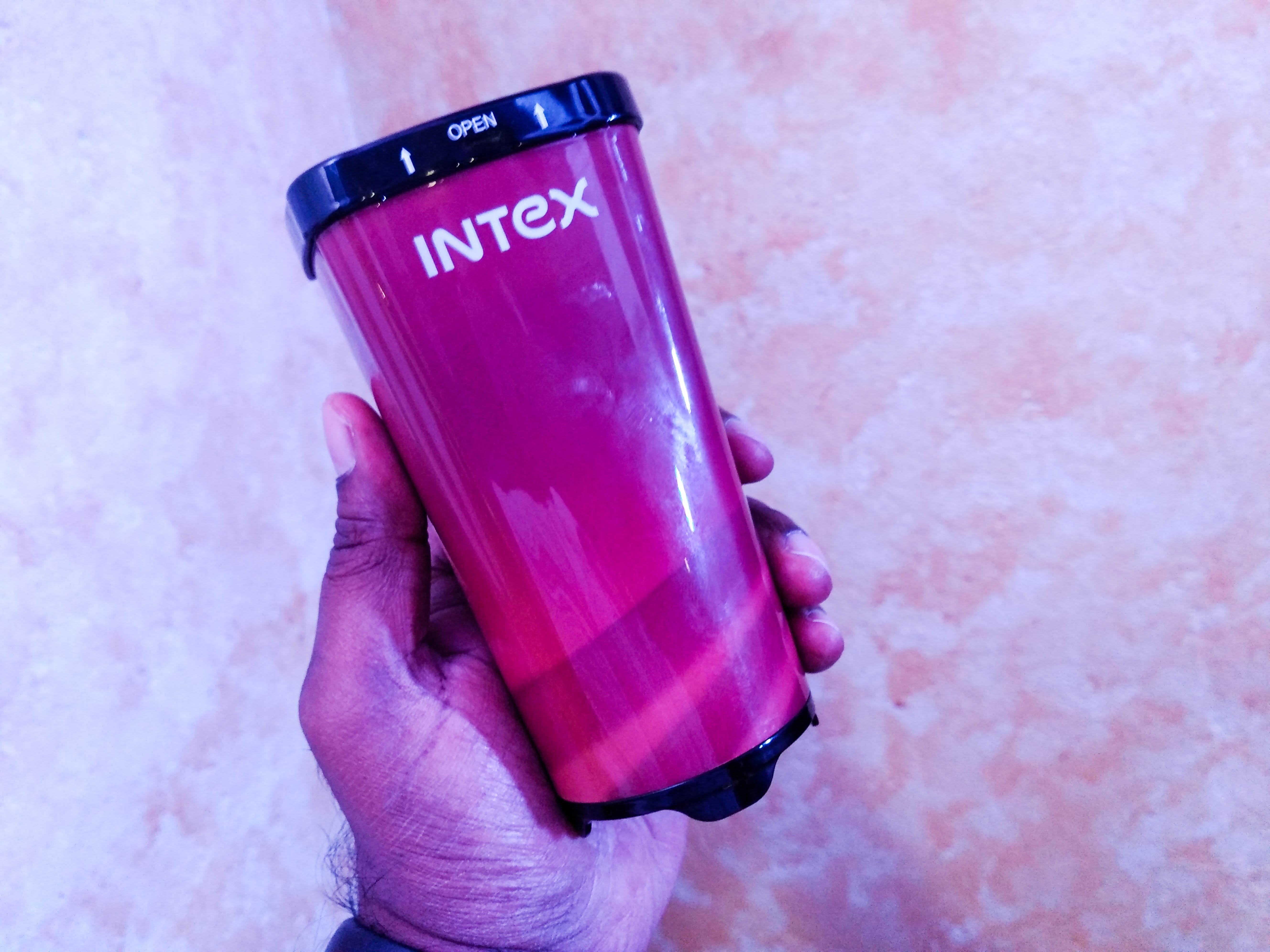 Intex inverter